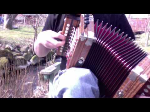 Accordéon music 10. Martin Cajun Squeezebox