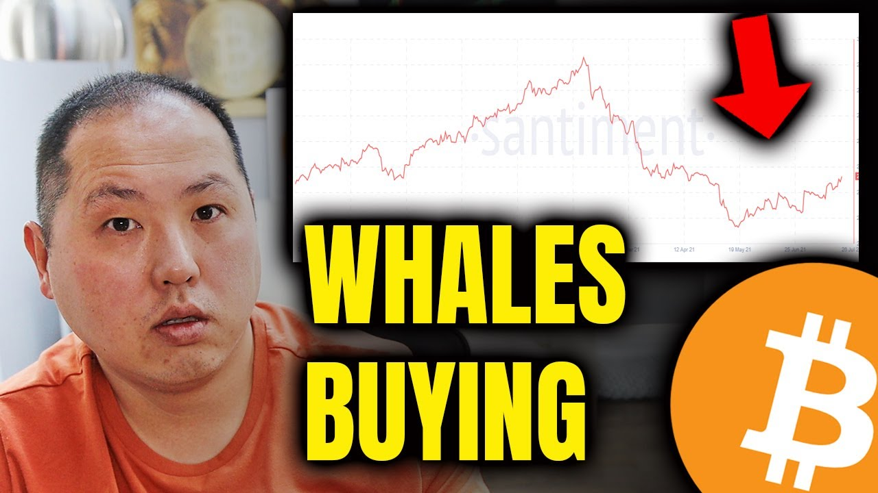BITCOIN HOLDERS PAY ATTENTION TO WHALES BUYING