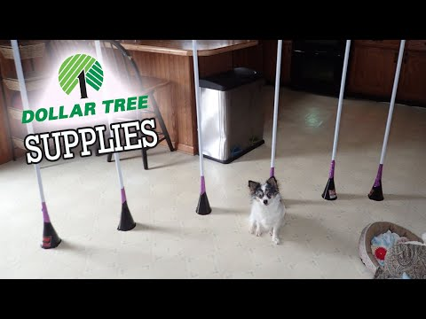 How To Make Dog Weave Poles | Cheap & Easy DIY Dog Agility Home Equipment- Weave Poles *LOW COST*