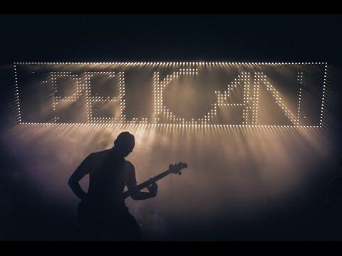Pelican (live at #dnk16)