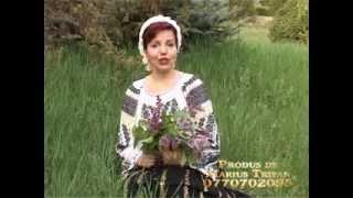 Irina Zoican   Nana mi ai luat inima