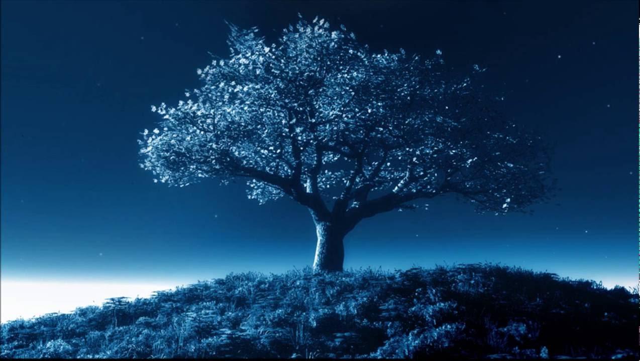 Stand High Patrol The Big Tree Raymony Remix Youtube