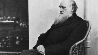 What is evolution? Charles Darwin