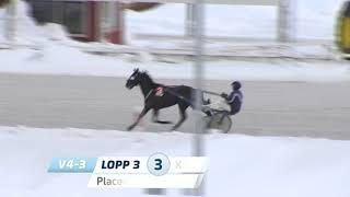 Vidéo de la course PMU PRIX LUNCHSPRINTERN
