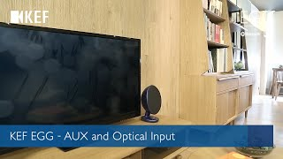 KEF EGG - AUX and Optical Input