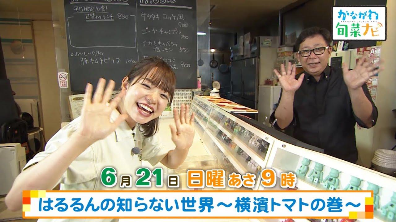 しおり げん ちゃん 9