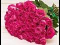 Мой букет из красных роз для тебя любимая mp3
