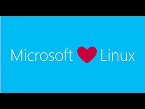 How to access the Ubuntu Bash in Windows 10