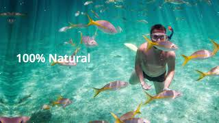 Leaf Juice - Reef Friendly Skin Care