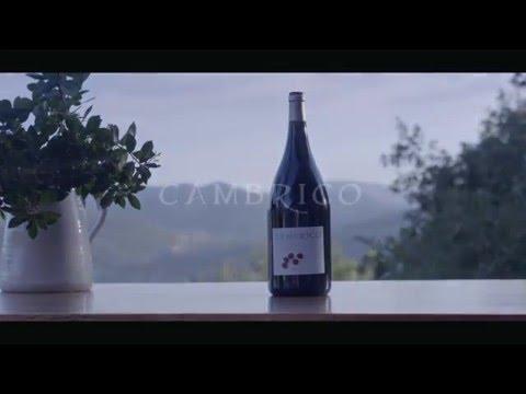 Unique organic wine