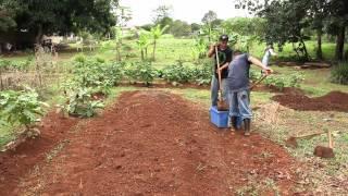 La Tierra Prometida - www.agroecologiapr.org