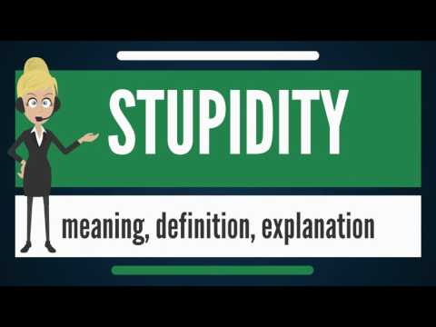 What is STUPIDITY? What does STUPIDITY mean? STUPIDITY meaning, definition & explanation