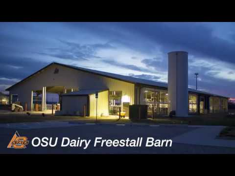 OSU Ferguson Family Dairy Center Freestall Barn