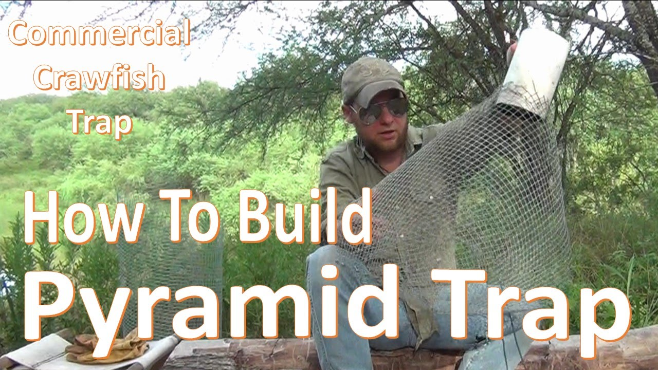 Pyramid Trap How To Build And Set