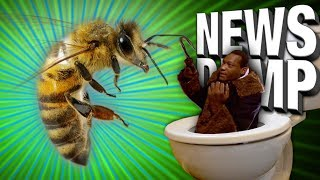 1-bee-sting-for-1000-dollars-would-you-do-it-news-dump