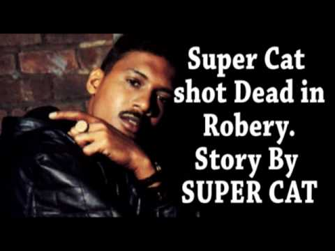 Super Cat shot & kill Story by Super Cat