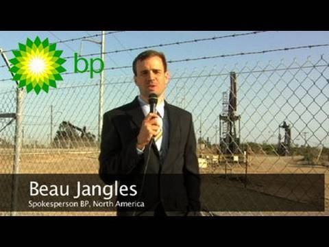 bp oil spill response One year on, what is the environmental legacy of the bp oil spill in the gulf of mexico, and was it as bad as feared.