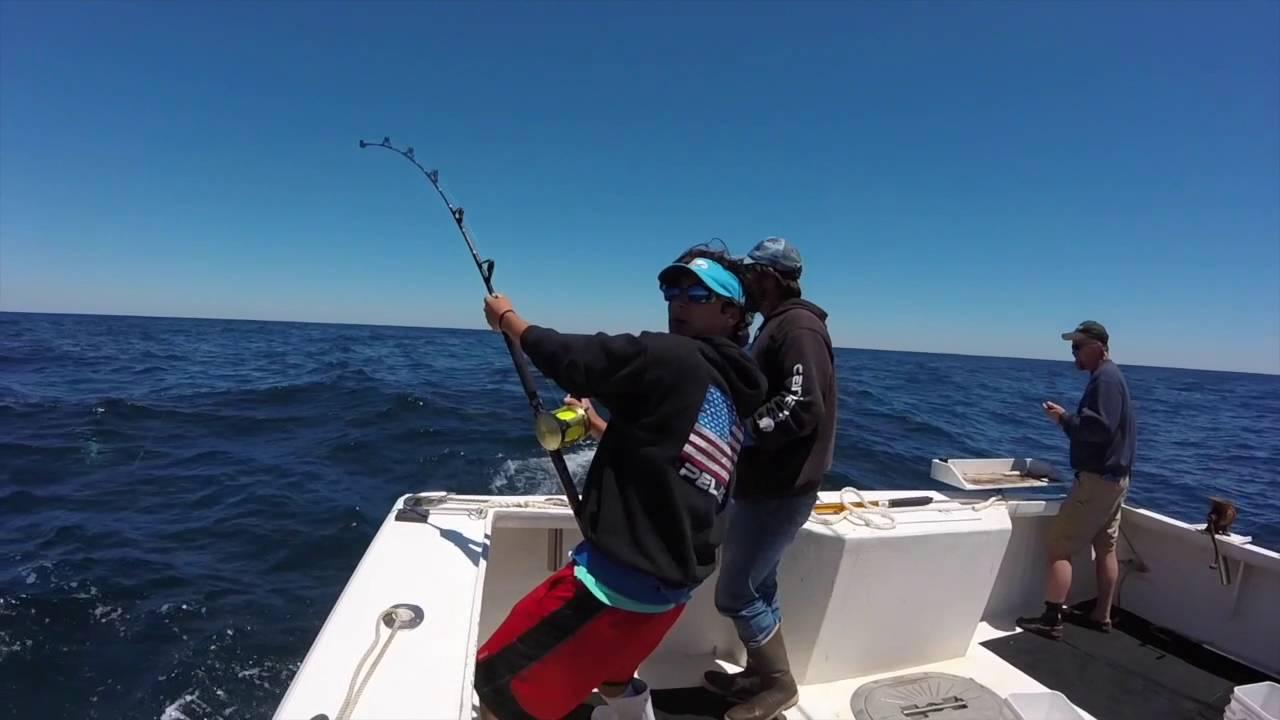 Mako shark fishing cape may nj 2016 youtube for Shark fishing nj