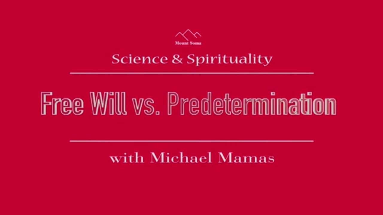 a discussion on freedom and free will
