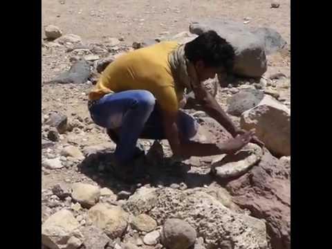 Bread-Making Bedouin Shepherd in Jordan - Theresa Jackson, Luxury Travel Advisor