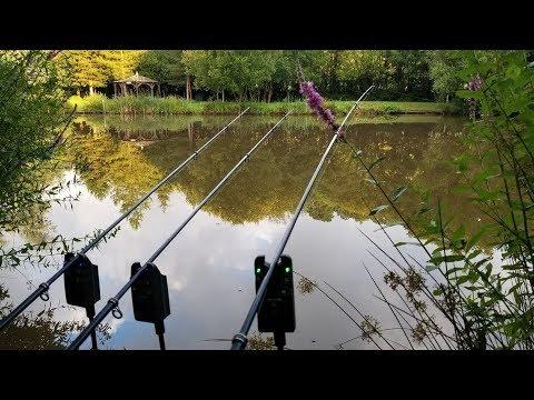 Fishing UK For 21 Days (PART 1) Carp, Shark, Conger Eel, Coarse & Sea Angling.