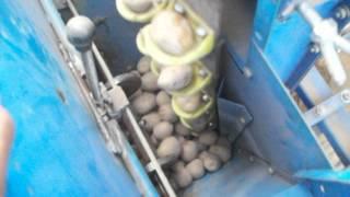 Potato Planter Automatic