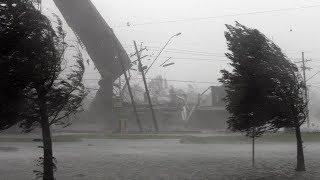 Ураган в Москве просто жесть.