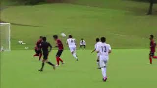全県のアスリートが熱戦を繰り広げる沖縄県民体育大会
