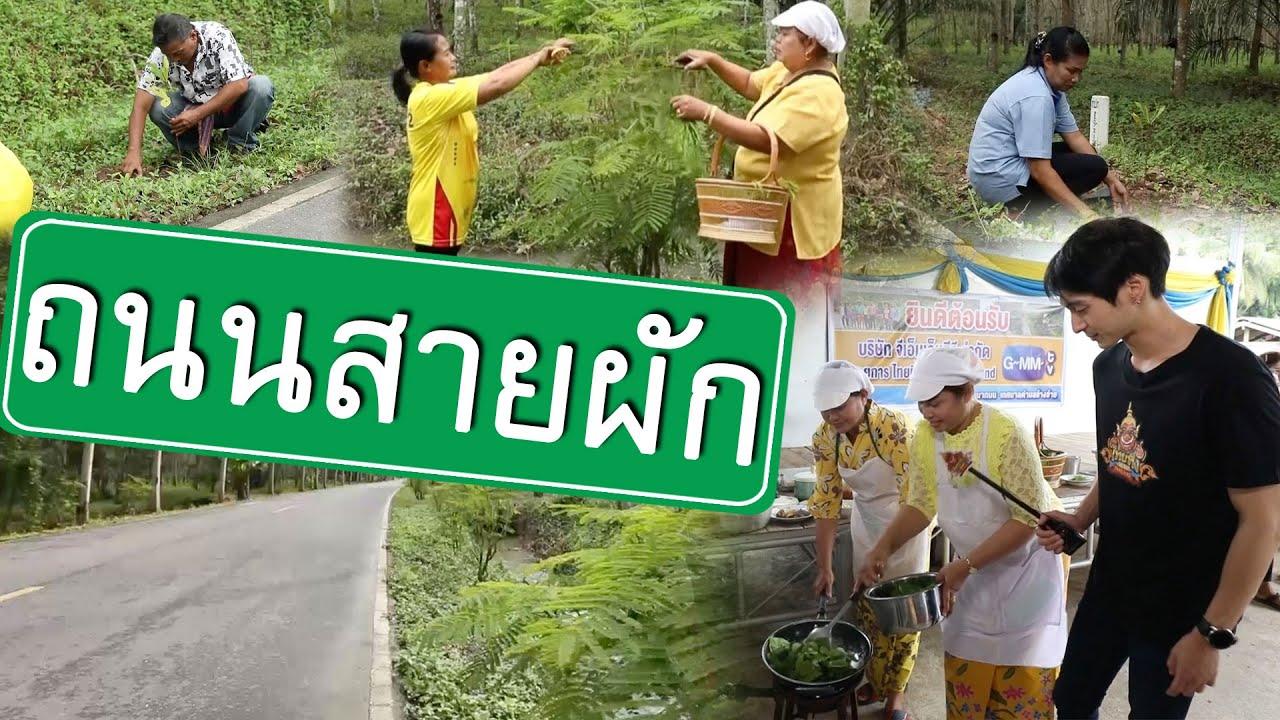 ถนนสายผัก | ไทยทึ่ง WOW! THAILAND