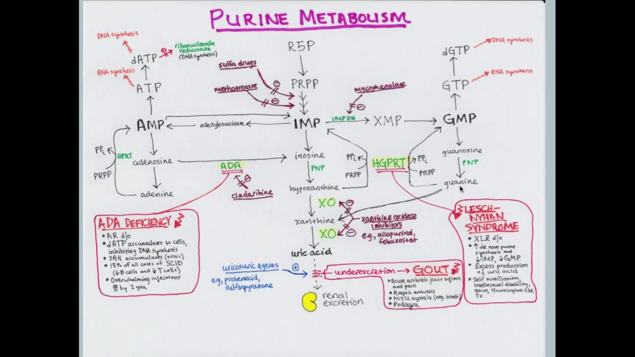 Metode eficiente cu atp metabolism