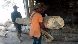 Straight and Crocked High Quality of Wood Cutting in Rural Saw Mill of Bangladesh/ BD Saw Mill