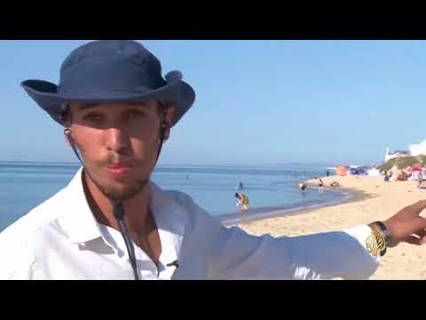 هذا الصباح- تونسي يقود مبادرة لتنظيف شواطئ بلاده  - نشر قبل 33 دقيقة