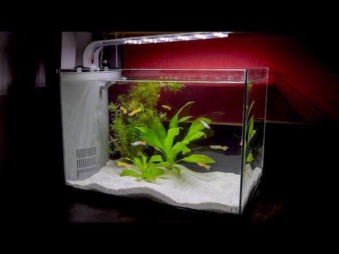 College Dorm Aquarium Build