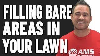 Filling Bare Areas in Winter Lawn