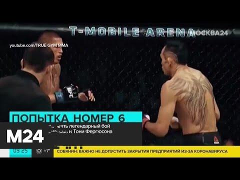 UFC хотят организовать бой Хабиба Нурмагомедова и Тони Фергюсона - Москва 24