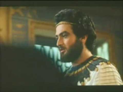 Mostafa Zamani - A Handsome Man