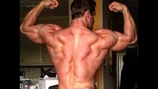 stanimal training for classic physique give it all you got