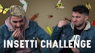 MADE IN INSETTI CHALLENGE #2 - Matt & Bise