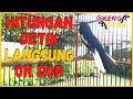 Suara Pancingan Poci Kacer Gacor Ngeplong Full Nembak Isian Mewah Cocok Buat Kacer Yang Macet Bunyi  Mp3 - Mp4 Download
