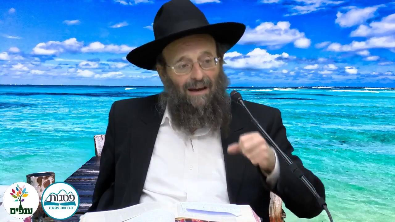 תכלית המצוות ושכרן - הרב יצחק גולדווסר HD - שידור חוזר