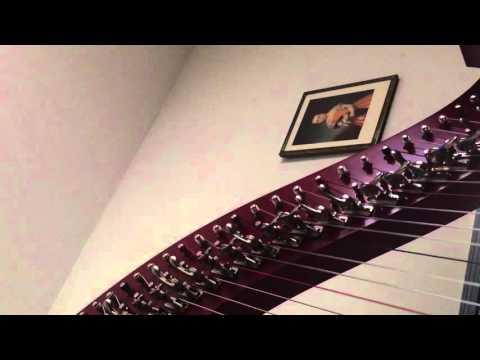 Greensleeves on my Excalibar harp by camac