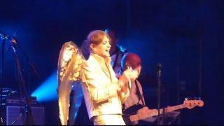 Ziggy 2014 - Starman