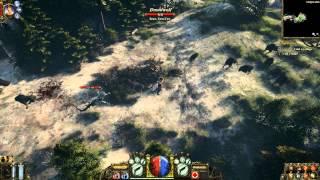 The Incredible Adventures of Van Helsing PC GamePlay HD 720p