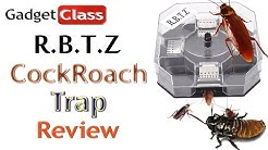 (:Review:) RBTZ CockRoach Trap ~ Tested on Camera w/Dubia Cockroaches