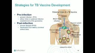 Vaccine Development for Pandemic Threats: From the Lab Bench to Clinical Trials