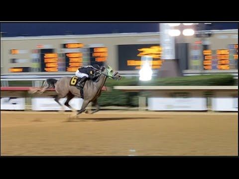 $30,000 Lone Star Texas Juvenile Arabian Stakes