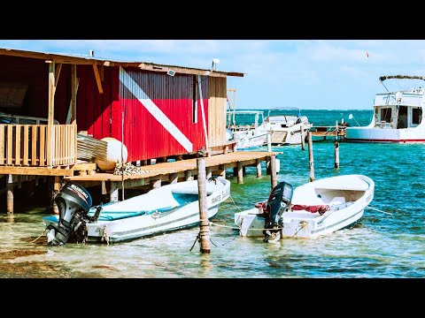 Guatemala To Belize // Travel Day Vlog!!
