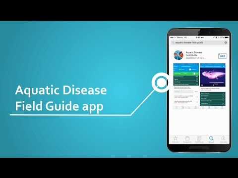 Aquatic Animal Diseases Significant To Australia: Identification Field Guide Mobile Application