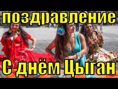 Поздравление с Днём цыган поздравления Международный день цыган - Смешные видео приколы