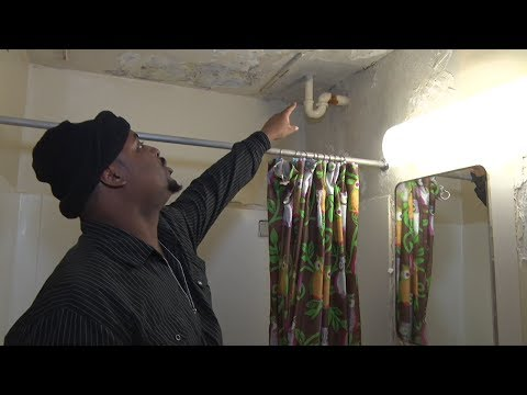 Inside NYCHA Housing: A Firsthand Account